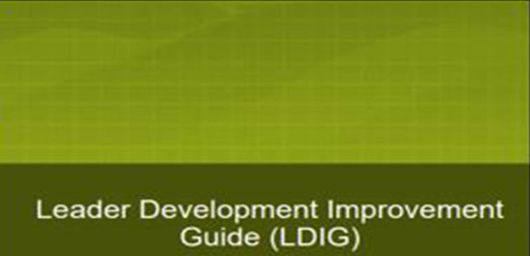 Leader Development Improvement Guide (LDIG)